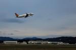 HNANA787さんが、花巻空港で撮影したタイガーエア台湾 A320-232の航空フォト(飛行機 写真・画像)