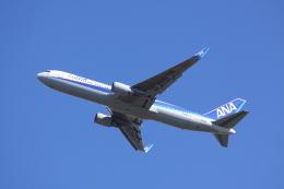 赤ちんさんが、成田国際空港で撮影した全日空 767-381/ERの航空フォト(飛行機 写真・画像)
