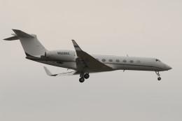 航空フォト:N928GC ウィルミントン・トラスト・カンパニー G-V