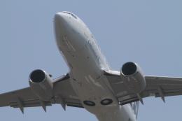 TAK_HND_NRTさんが、高松空港で撮影したコンチネンタル航空 737-724の航空フォト(飛行機 写真・画像)