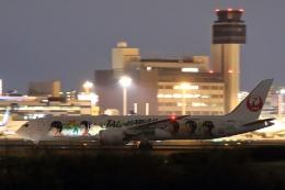リクパパさんが、伊丹空港で撮影した日本航空 787-9の航空フォト(飛行機 写真・画像)