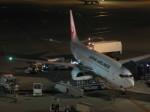 くまのんさんが、中部国際空港で撮影した日本航空 737-846の航空フォト(飛行機 写真・画像)