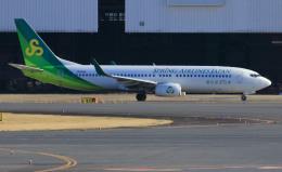 CL&CLさんが、成田国際空港で撮影した春秋航空日本 737-8ALの航空フォト(飛行機 写真・画像)