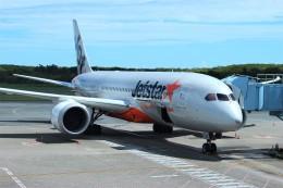 みっしーさんが、ケアンズ空港で撮影したジェットスター 787-8 Dreamlinerの航空フォト(飛行機 写真・画像)