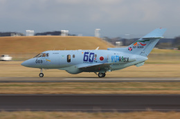 BENNYさんが、新田原基地で撮影した航空自衛隊 U-125A (BAe-125-800SM)の航空フォト(飛行機 写真・画像)