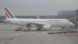 AE31Xさんが、パリ シャルル・ド・ゴール国際空港で撮影したエールフランス航空 A320-214の航空フォト(飛行機 写真・画像)