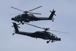 ☆ゆっきー☆さんが、シンガポール・チャンギ国際空港で撮影したシンガポール空軍 AH-64Dの航空フォト(飛行機 写真・画像)