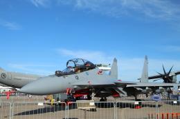 ☆ゆっきー☆さんが、シンガポール・チャンギ国際空港で撮影したマレーシア空軍 Su-30MKMの航空フォト(飛行機 写真・画像)
