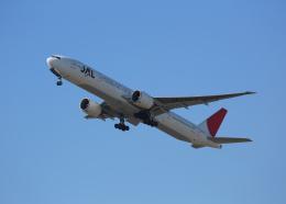 銀苺さんが、成田国際空港で撮影した日本航空 777-346/ERの航空フォト(飛行機 写真・画像)