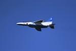 kumagorouさんが、仙台空港で撮影した航空自衛隊 T-4の航空フォト(飛行機 写真・画像)