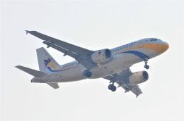 amagoさんが、スワンナプーム国際空港で撮影したミャンマー国際航空 A319-111の航空フォト(飛行機 写真・画像)