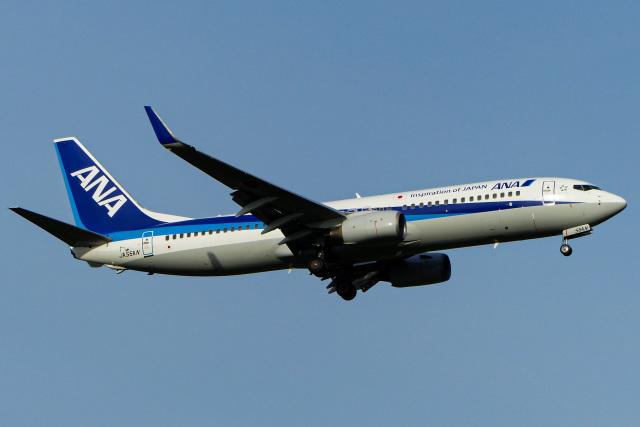 Snowman☃️さんが、新千歳空港で撮影した全日空 737-881の航空フォト(飛行機 写真・画像)