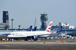 どんちんさんが、成田国際空港で撮影したブリティッシュ・エアウェイズ 787-9の航空フォト(飛行機 写真・画像)