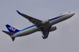 JA8943さんが、那覇空港で撮影した全日空 737-881の航空フォト(飛行機 写真・画像)