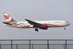 さくらの城南山。さんが、成田国際空港で撮影したサンデー・エアラインズ 767-332/ERの航空フォト(飛行機 写真・画像)