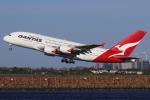 つみネコ♯2さんが、シドニー国際空港で撮影したカンタス航空 A380-842の航空フォト(飛行機 写真・画像)
