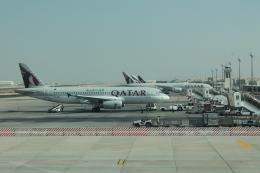 だいすけさんが、ドーハ国際空港で撮影したカタール航空 A320-232の航空フォト(飛行機 写真・画像)