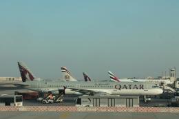 だいすけさんが、ドーハ国際空港で撮影したカタール航空 A321-231の航空フォト(飛行機 写真・画像)