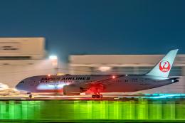 こうきさんが、成田国際空港で撮影した日本航空 787-8 Dreamlinerの航空フォト(飛行機 写真・画像)