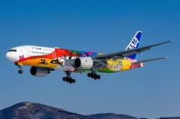 Ariesさんが、函館空港で撮影した全日空 777-281/ERの航空フォト(飛行機 写真・画像)