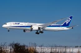 Ariesさんが、函館空港で撮影した全日空 787-9の航空フォト(飛行機 写真・画像)