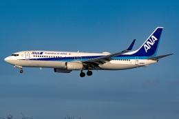 Ariesさんが、函館空港で撮影した全日空 737-881の航空フォト(飛行機 写真・画像)