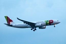 だいすけさんが、ジョン・F・ケネディ国際空港で撮影したTAPポルトガル航空 A330-243の航空フォト(飛行機 写真・画像)