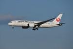 Cスマイルさんが、成田国際空港で撮影した日本航空 787-8 Dreamlinerの航空フォト(飛行機 写真・画像)