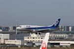 Gpapaさんが、福岡空港で撮影したANAウイングス 737-54Kの航空フォト(飛行機 写真・画像)