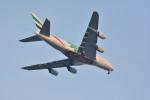 アルビレオさんが、成田国際空港で撮影したエミレーツ航空 A380-861の航空フォト(飛行機 写真・画像)