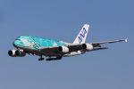 よんろくさんが、成田国際空港で撮影した全日空 A380-841の航空フォト(飛行機 写真・画像)