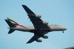 FRTさんが、スワンナプーム国際空港で撮影したエミレーツ航空 A380-842の航空フォト(飛行機 写真・画像)