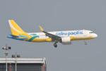kuro2059さんが、香港国際空港で撮影したセブパシフィック航空 A320-271Nの航空フォト(飛行機 写真・画像)