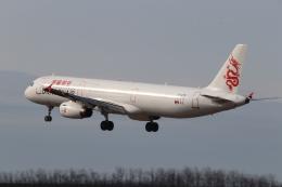 いぶちゃんさんが、新潟空港で撮影したキャセイドラゴン A321-231の航空フォト(飛行機 写真・画像)
