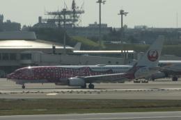 nontan8さんが、那覇空港で撮影した日本トランスオーシャン航空 737-8Q3の航空フォト(飛行機 写真・画像)