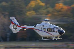 Assk5338さんが、松本空港で撮影した静岡エアコミュータ EC135T2の航空フォト(飛行機 写真・画像)