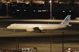 flying_horseさんが、羽田空港で撮影したベルギー空軍 A321-231の航空フォト(飛行機 写真・画像)