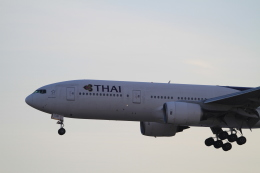 TAK_HND_NRTさんが、成田国際空港で撮影したタイ国際航空 777-2D7の航空フォト(飛行機 写真・画像)
