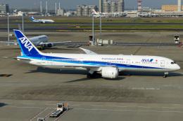 Snowman☃️さんが、羽田空港で撮影した全日空 787-9の航空フォト(飛行機 写真・画像)