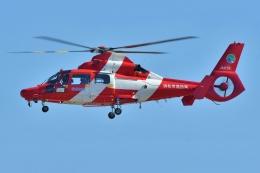 ブルーさんさんが、名古屋飛行場で撮影した浜松市消防航空隊 AS365N3 Dauphin 2の航空フォト(飛行機 写真・画像)
