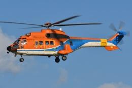 ブルーさんさんが、名古屋飛行場で撮影した新日本ヘリコプター AS332L1 Super Pumaの航空フォト(飛行機 写真・画像)