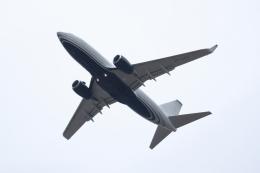 TAKAHIDEさんが、成田国際空港で撮影したケイマン諸島企業所有 737-7JB BBJの航空フォト(飛行機 写真・画像)
