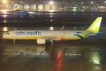 板付蒲鉾さんが、福岡空港で撮影したセブパシフィック航空 A321-271NXの航空フォト(飛行機 写真・画像)