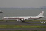 フッ軽の極美さんが、羽田空港で撮影したドイツ空軍 A340-313Xの航空フォト(飛行機 写真・画像)