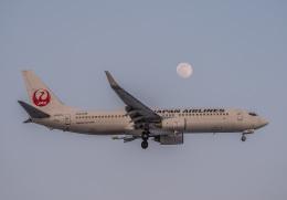 Cygnus00さんが、新千歳空港で撮影した日本航空 737-846の航空フォト(飛行機 写真・画像)