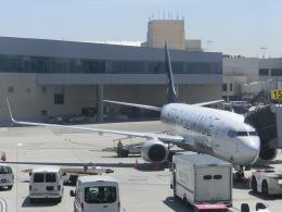 ヒロリンさんが、ロサンゼルス国際空港で撮影したコパ航空 737-86Nの航空フォト(飛行機 写真・画像)