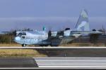 とらとらさんが、茨城空港で撮影した航空自衛隊 C-130H Herculesの航空フォト(飛行機 写真・画像)