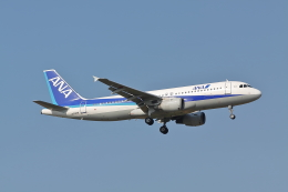赤ちんさんが、成田国際空港で撮影した全日空 A320-211の航空フォト(飛行機 写真・画像)