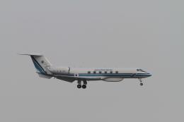 TAK_HND_NRTさんが、羽田空港で撮影した海上保安庁 G-V Gulfstream Vの航空フォト(飛行機 写真・画像)