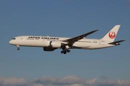 航空フォト:JA877J 日本航空 787-9